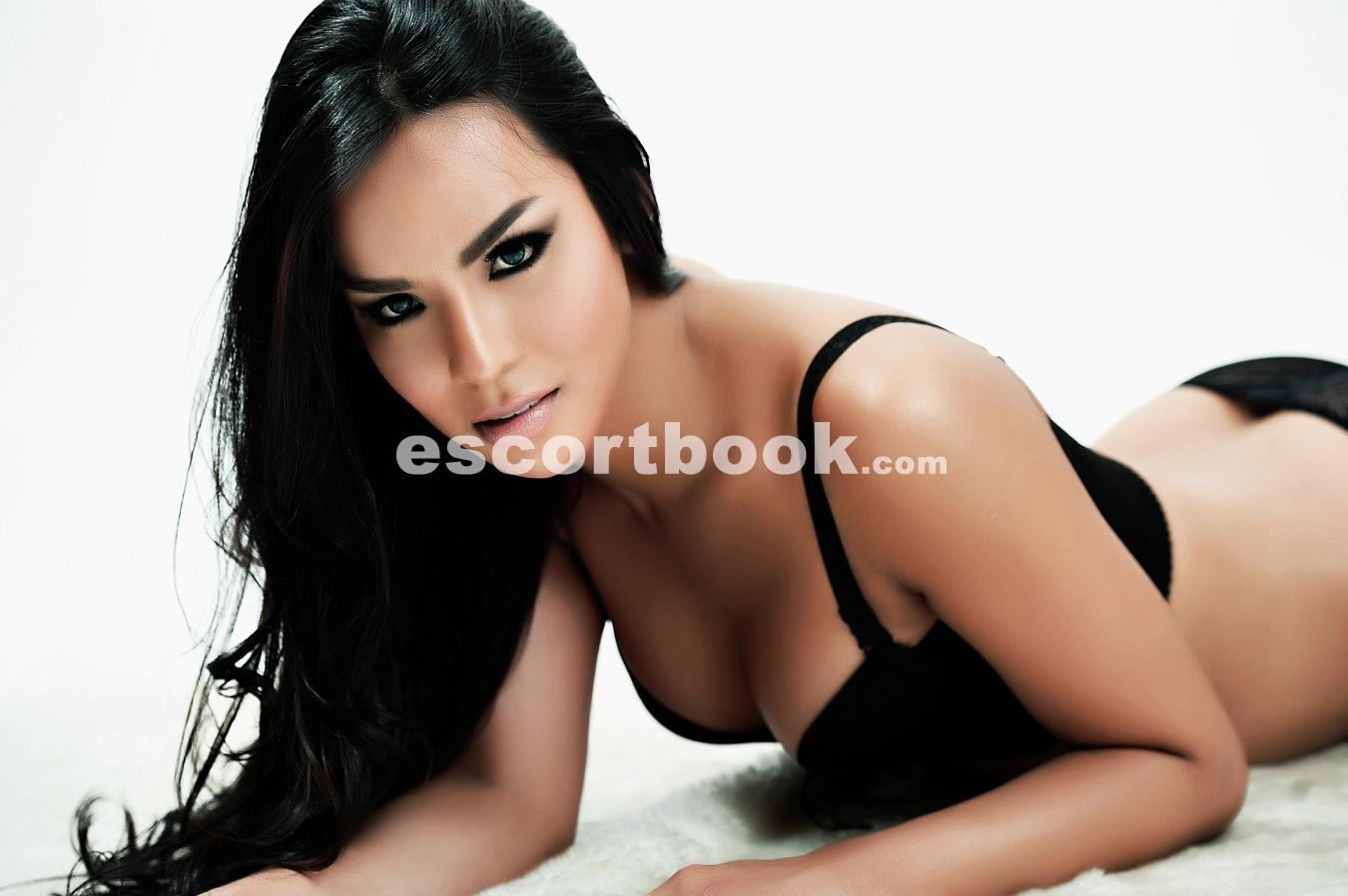 transexual escort escort book Sydney